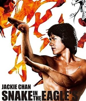 Download Snake in the Eagles Shadow (1978) Hindi Dubbed 480p 720p & 1080p