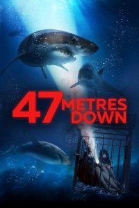 Download 47 Meters Down (2017) Dual Audio Hindi 480p 300MB | 720p 850MB BluRay