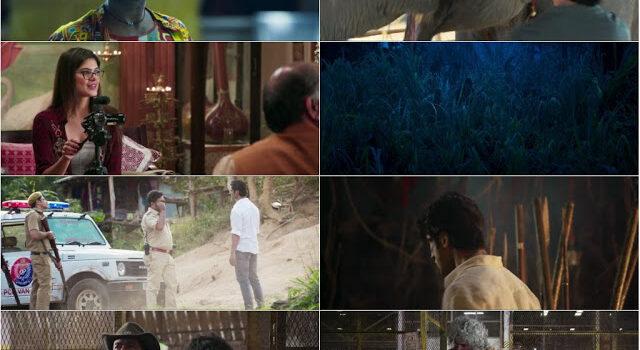Download Junglee (2019) Hindi Full Movie 480p [300MB] | 720p [1GB] | 1080p [3GB]